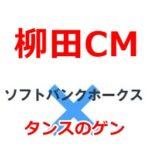 柳田(ギータ)選手のCM『タンスのゲン』ってどんな会社?CM費用はいくら掛かるのか気になる!